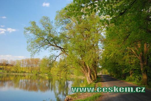 Silnice kolem Lodenického rybníka.