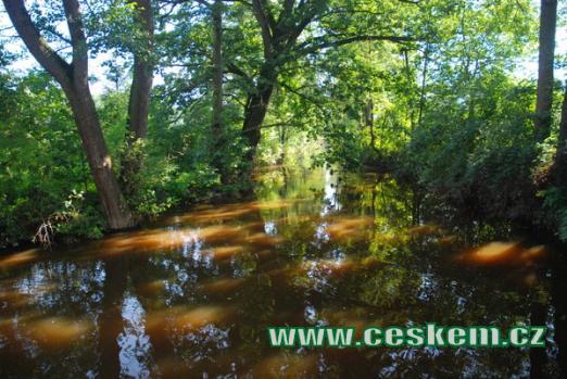 Řeka Blanice.