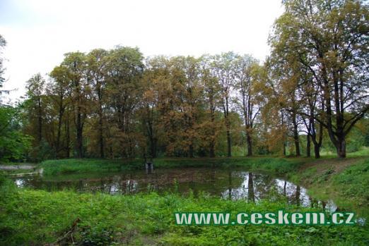 Rybník nedaleko hradu Sukoslav.