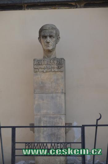 Busta MUDr. Ferdinanda Arlta.