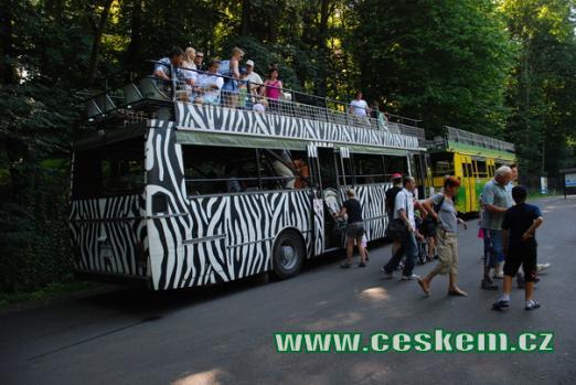Safari bus.
